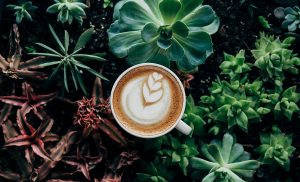 What is Low Acid Coffee?